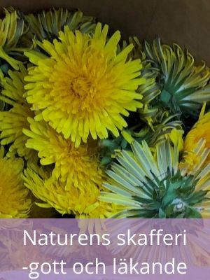 Naturans-skafferi